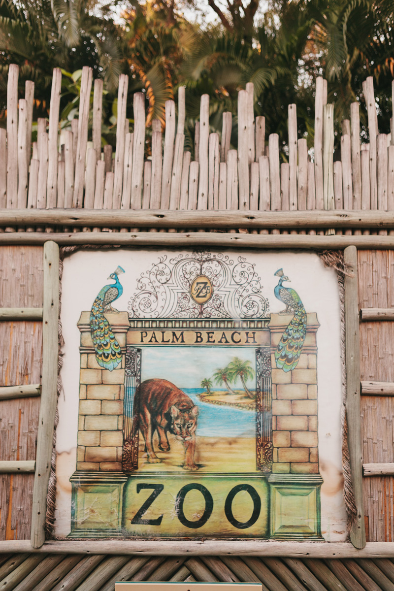 Palm Beach Zoo Wedding | The Majestic Vision Wedding Planning | Palm Beach Zoo in Palm Beach, FL | www.themajesticvision.com | Robert Madrid Photography