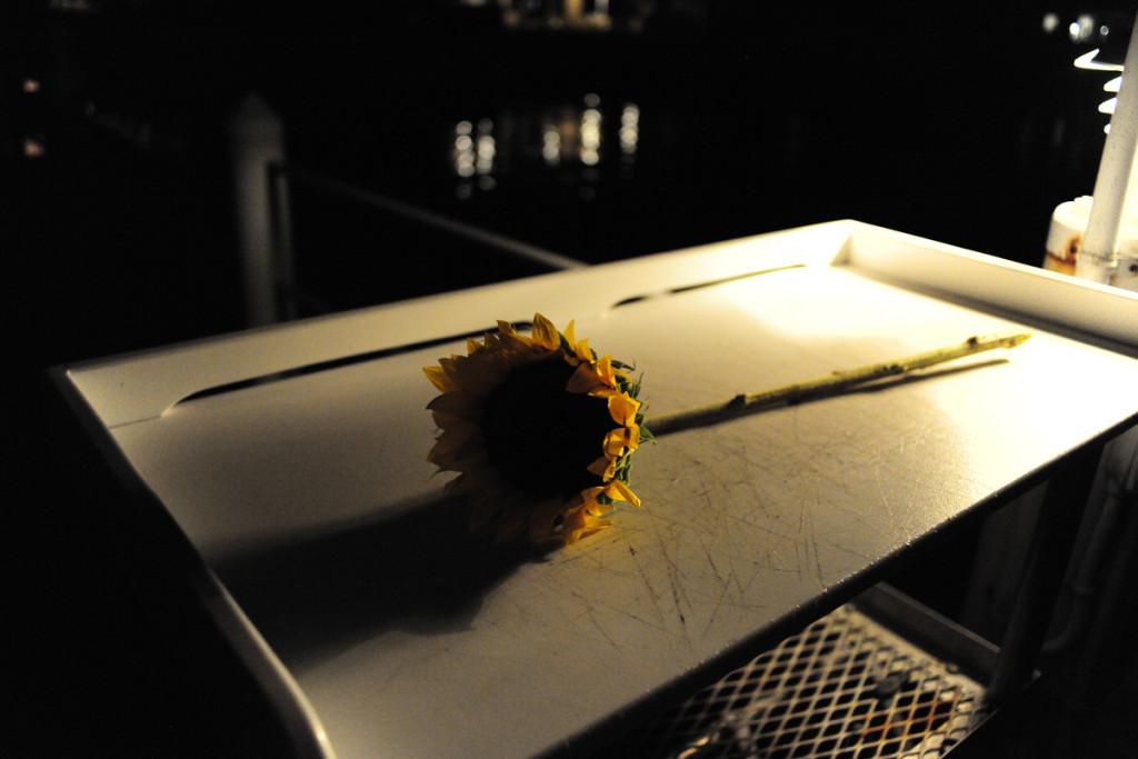Single Sunflower for Beautiful Nighttime Wedding Proposal | The Majestic Vision Wedding Planning | Palm Beach, FL | www.themajesticvision.com | Emily Allongo Photography