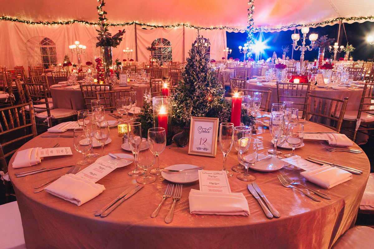 Elegant Christmas Themed Wedding with Christmas Tree Centerpiece | The Majestic Vision Wedding Planning | Fairchild Tropical Garden in Coral Gables, FL | www.themajesticvision.com | Robert Madrid Photography