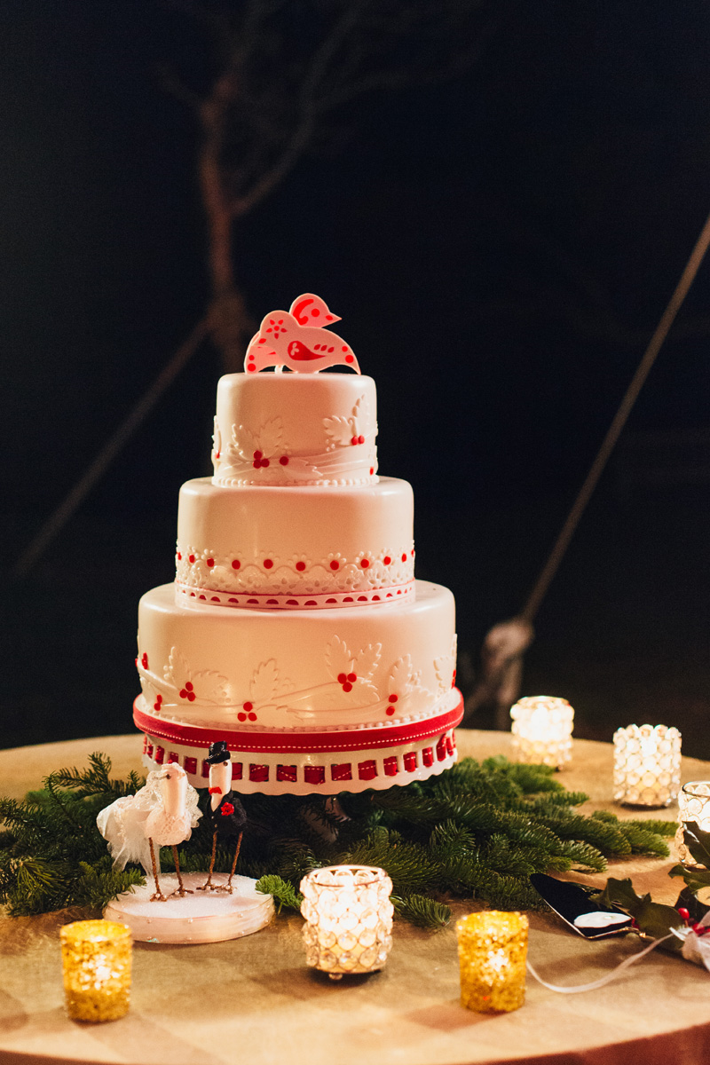 Elegant Christmas Themed Wedding with Love Bird Wedding Cake | The Majestic Vision Wedding Planning | Fairchild Tropical Garden in Coral Gables, FL | www.themajesticvision.com | Robert Madrid Photography