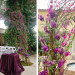 Elegant Wedding Ceremony Arch with Stunning Purple Orchids at The Addison Boca in Palm Beach, FL thumbnail