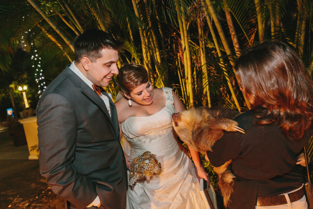 Unique Animal Encounter at Cocktail Hour | The Majestic Vision Wedding Planning | Palm Beach Zoo in Palm Beach, FL | www.themajesticvision.com | Robert Madrid Photography