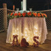 Elegant and Rustic Orange and Yellow Sweetheart Table at Palm Beach Zoo in Palm Beach, FL thumbnail