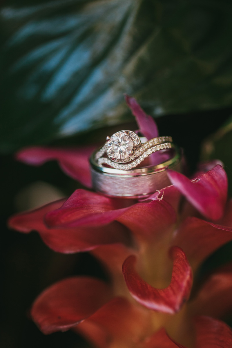 Beautiful Wedding Rings | The Majestic Vision Wedding Planning | Palm Beach Zoo in Palm Beach, FL | www.themajesticvision.com | Robert Madrid Photography