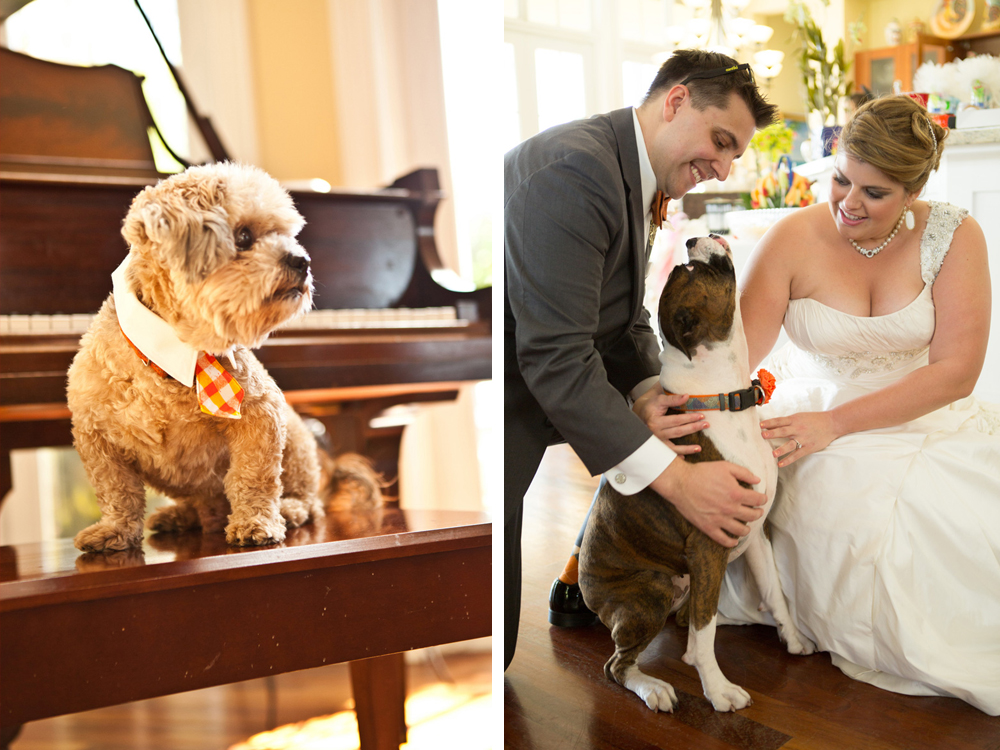 Dog as Bridal Party Member | The Majestic Vision Wedding Planning | Palm Beach Zoo in Palm Beach, FL | www.themajesticvision.com | Robert Madrid Photography