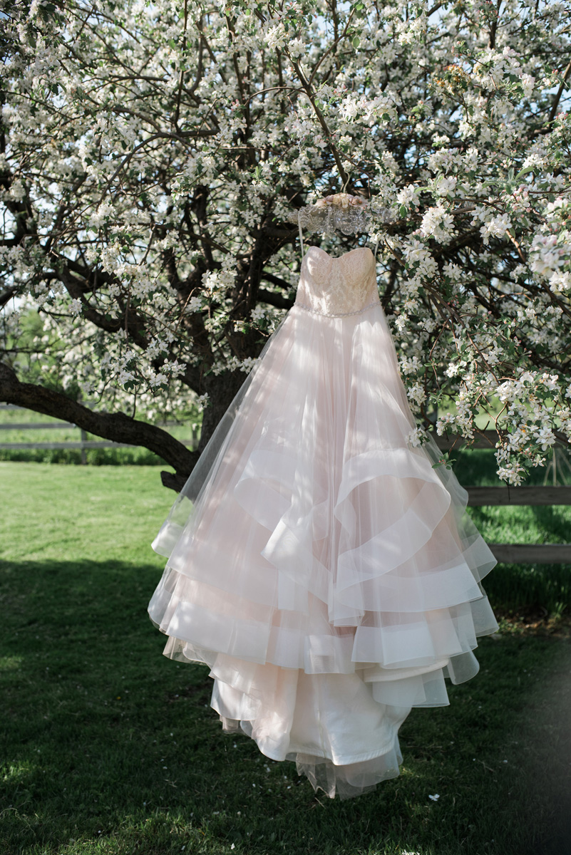 Stunning Blush Tara Keely Wedding Gown | The Majestic Vision Wedding Planning | Rustic Manor in Milwaukee, WI | www.themajesticvision.com | Elizabeth Haase Photography