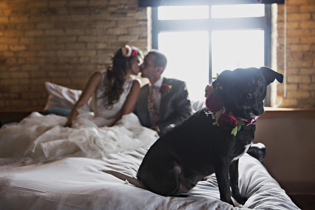 Romantic Couple with Dog Flower Girl | The Majestic Vision Wedding Planning | Iron Horse Hotel in Milwaukee, WI | www.themajesticvision.com | Shannon Wucherer Photography