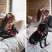 Romantic Couple with Dog Flower Girl at Iron Horse Hotel in Milwaukee, WI thumbnail