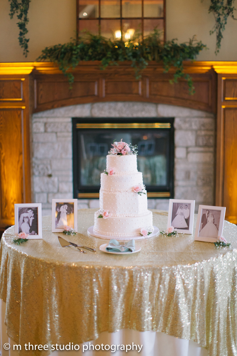White Dot Cake at Rose Quartz and Serenity Blue Wedding | The Majestic Vision Wedding Planning | Legend of Brandybrook in Milwaukee, WI | www.themajesticvision.com | M Three Studio